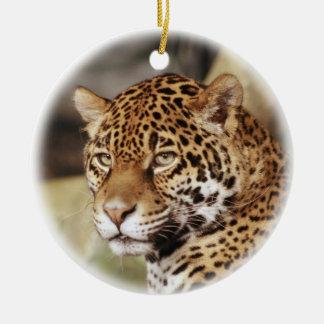 Het Ornament van Jaguar