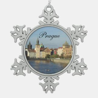 Het Ornament van Praag van het tin