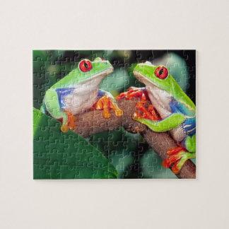 Het Paar van Red Eye Treefrog, callidryas Agalychi Puzzel