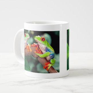 Het Paar van Red Eye Treefrog, callidryas Grote Koffiekop