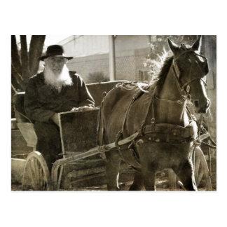 Het Paard die van Amish Gekke met uit Geplakte Briefkaart