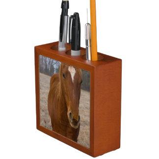 Het paard stelt pennenhouder