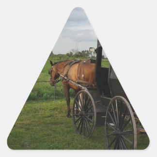Het Paard van Amish en Met fouten bij Stickers