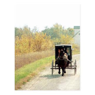 Het Paard van Amish van de herfst en Met fouten Briefkaart