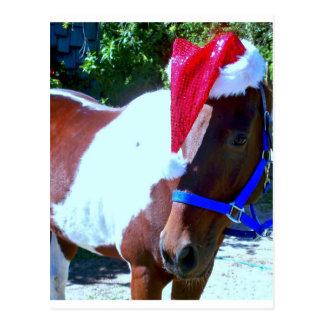 Het Paard van de kerstman Briefkaart