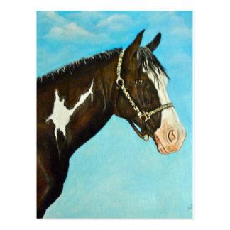 Het Paard van de verf Briefkaart