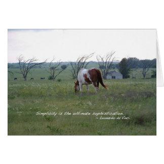 Het Paard van de Verf van Kansas Wenskaart