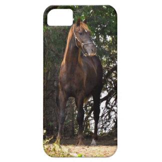 Het Paard van Morgan Barely There iPhone 5 Hoesje