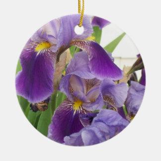 Het paarse Ornament van de Iris
