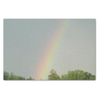 Het papieren zakdoekje van de regenboog tissuepapier