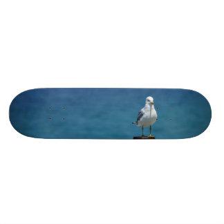 Het Paradijs van zeemeeuwen in Mackinac Skateboard Deck