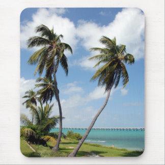 Het Park van de Staat van Bahia Honda en de Brug Muismat