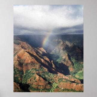 Het Park van Hawaï, Kauai, de Staat van de Canion Poster