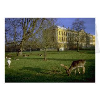 Het park van herten, Magdalen Universiteit, Briefkaarten 0