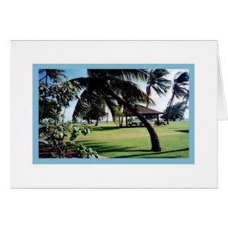 Het Park van het Strand kaart-Poipu, Kauai, Hawaï Kaart