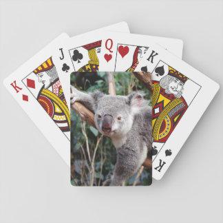 Het Park van het Wild van Featherdale, Koala's Pokerkaarten