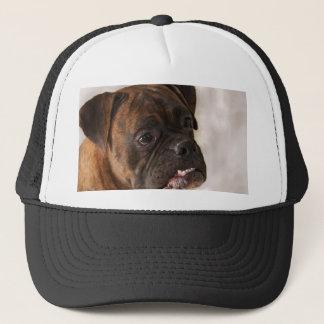 Het patriottische pet van de Hond van de Bokser