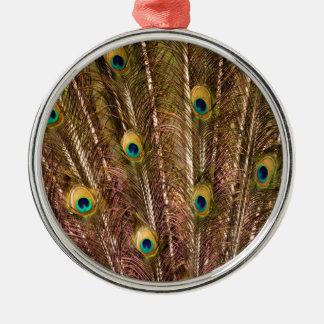 Het Patroon van de Veer van de pauw Zilverkleurig Rond Ornament