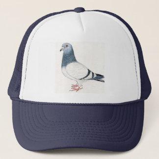 Het Pet van de duif