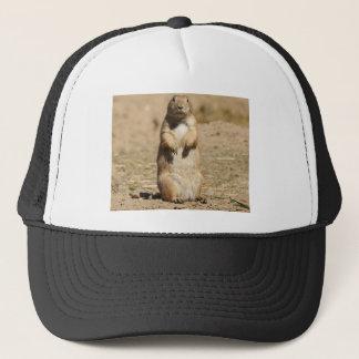 Het Pet van de prairiehond