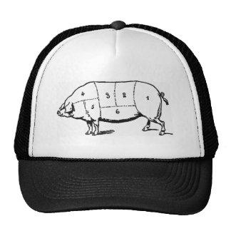 Het Pet van het varken
