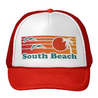 Het Pet van Miami van het Strand van het zuiden