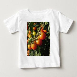 Het plant die van de tomaat in de tuin groeien. baby t shirts