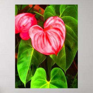 Het Plant van de anthurium Poster