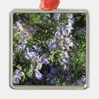 Het plant van Rosemary met bloemen in Toscanië, Zilverkleurig Vierkant Ornament