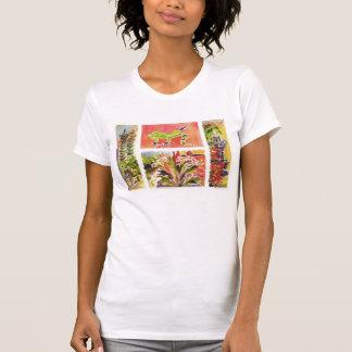 Het plein t van Honduras T Shirt