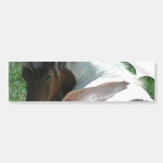 Het Pony die van de verf de Sticker van de Bumper
