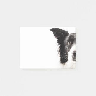 Het Portret van border collie Post-it® Notes