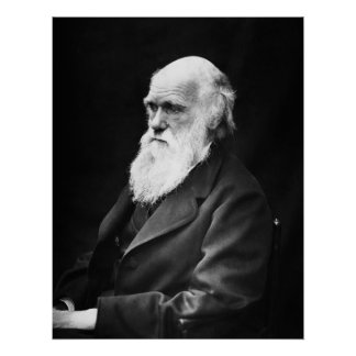 Het Portret van Charles Darwin