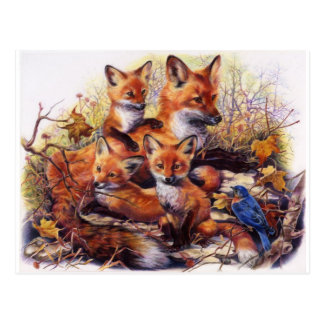 Het Portret van de Familie van de vos Briefkaart