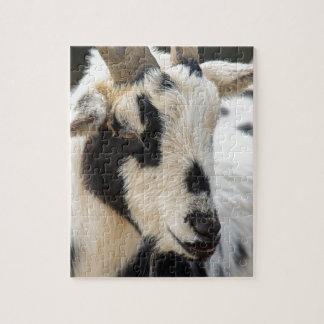 Het portret van de geit puzzel