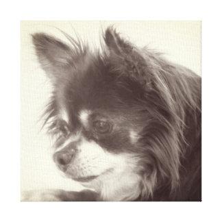 Het Portret van de Hond van Chihuahua Canvas Afdrukken