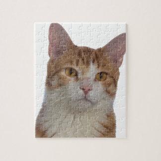 Het Portret van de kat Puzzel