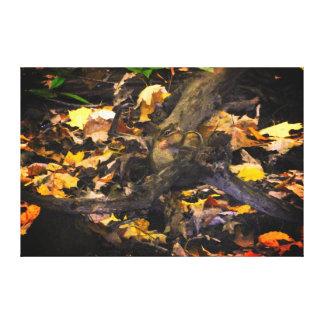 Het Portret van het Wild van de herfst Canvas Afdruk