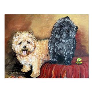 Het Portret van Terrier van de steenhoop Briefkaart