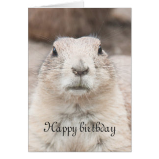 Het portretverjaardag van de prairiehond briefkaarten 0