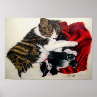 Het Poster van de Kat en van de Katjes van de moed