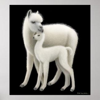 Het Poster van de Liefde van de alpaca