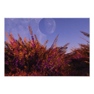 Het Poster van de Muur van twee Planeten Foto Prints