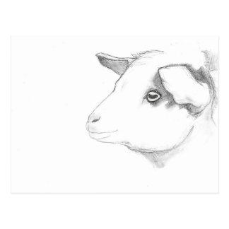 Het profielbriefkaart van de geit door Nicole Briefkaart