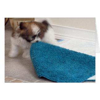 Het Puppy die van Havanese zijn deken bewegen Briefkaarten 0