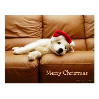 Het puppy draagt een Kerstmis pet en het liggen op Briefkaart