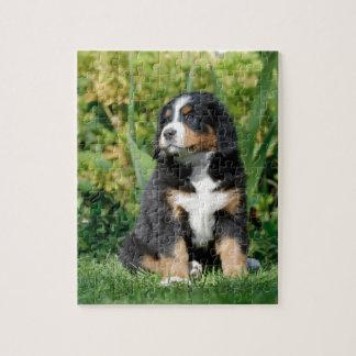 Het puppy van Bernese Puzzel