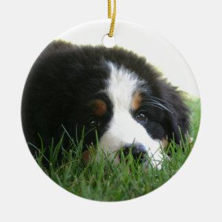 Het Puppy van Bernese Rond Keramisch Ornament