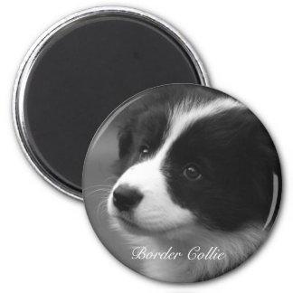 Het puppy van border collie ronde magneet 5,7 cm