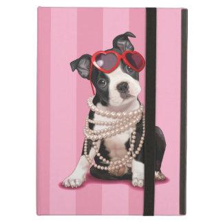 Het Puppy van Boston Terrier